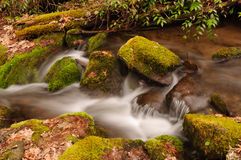 Moss and rocks in Mountain Stream Royalty Free Stock Images