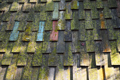 Moss on roof Royalty Free Stock Photo