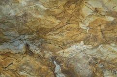 moss skały kamienia konsystencja Obrazy Royalty Free
