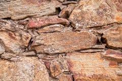 moss skały kamienia konsystencja clif w Hiszpania Śródziemnomorskim Fotografia Stock
