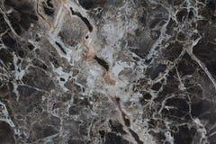 moss skały kamienia konsystencja Fotografia Royalty Free