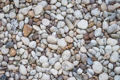 moss skały kamienia konsystencja Zdjęcie Royalty Free