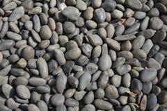 moss skały kamienia konsystencja Zdjęcie Stock