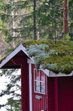 Moss roof on outhouse royalty free stock images