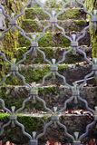 Moss stairs behind metal door. Stairs with moss, some leaves and old metal doors stock images