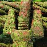 Moss and Steel Stock Photography