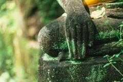 Moss stone Buddha Hand in the forest at Wat U-Mong Chiangmai Thailand. royalty free stock photography