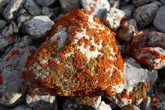 Moss stone at Kyrgyzstan wild mountains. Stone coverd with couloured moss at Kyrgyzstan wild mountains stock image