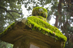Moss in a stone pagoda Stock Photo