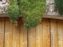 Moss on stone and wood architect Royalty Free Stock Photos