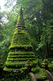 Moss stupa Royalty Free Stock Photos