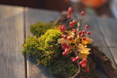 Moss and viburnum Royalty Free Stock Photos