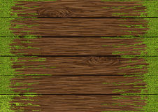 Moss on wood board. From hand drawing Royalty Free Stock Photography