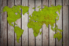 Moss world-map. Form on wood patio Royalty Free Stock Images