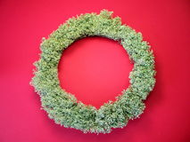 Moss wreath Royalty Free Stock Photos