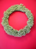 Moss wreath Royalty Free Stock Photography