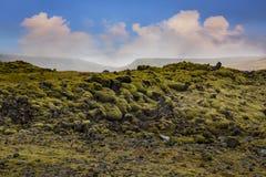 Mossa mossiga Lava Rocks på Katla Geopark, Island Fotografering för Bildbyråer