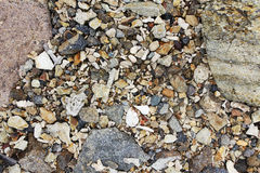 Mossa- och stenbakgrund Arkivbild