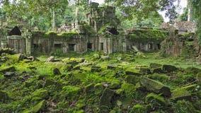 Mossa täckte stenar av Angkor Wat tempel i Cambodja Royaltyfria Bilder