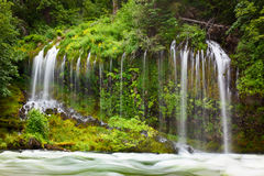Mossbrae Falls, Dunsmuir, Ca. Mossbrae Falls outside Dunsmuir, California is a gargantuan natural springs which flows year round Royalty Free Stock Photography