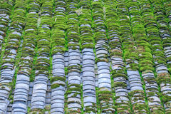 Mossed Roof Tiles Texture. Old Roof Texture Mossed by Green Grass Royalty Free Stock Photography