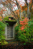 Mosses metal gate door autumn leaves tree garden Stock Photo