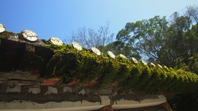 Mosses Oriental Building Roof top royalty free stock photos