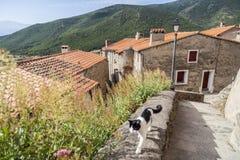 Mosset,Occitanie,France. Stock Images