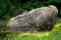 Mossig stenblock Fotografering för Bildbyråer