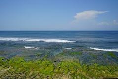 Mossig stenig kust på den Balangan stranden Fotografering för Bildbyråer