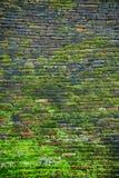 Mossig tegelsten av väggen Arkivbilder