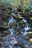 Mossig vattenfall i Smokies Arkivbild