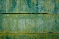 Mossiga paneler Royaltyfri Bild
