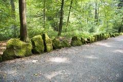 Mossiga stenar på Forest Alley Fotografering för Bildbyråer