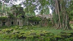 Mossigt fördärvar av Angkor Wat tempel i Cambodja Royaltyfria Bilder