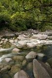 mossman的峡谷 库存照片