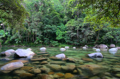 Mossman Gorge. Mossman River, Daintree National Park, Queensland, Australia royalty free stock images