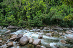 Mossman Gorge Royalty Free Stock Photos