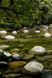 Mossman Gorge. Mossman River in the Daintree National Park, Queensland, Australia stock photo