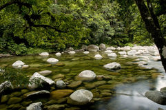 Mossman Gorge. Mossman River in the Daintree National Park, Queensland, Australia royalty free stock photo