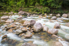 Mossman Gorge Rapids Stock Photography