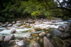 Mossman Gorge Rapids Royalty Free Stock Images