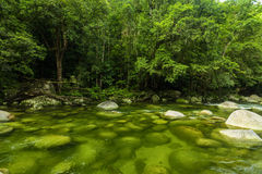 Mossman Gorge - river in Daintree National Park, Queensland, Australia. Mossman Gorge - river in Daintree National Park, north Queensland, Australia stock images