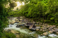 Mossman Gorge - river in Daintree National Park, Queensland, Aus. Mossman Gorge - river in Daintree National Park, north Queensland, Australia stock images