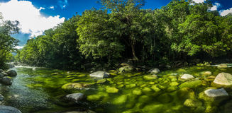 Mossman Gorge - river in Daintree National Park, Queensland, Australia. Mossman Gorge - river in Daintree National Park, north Queensland, Australia royalty free stock photos