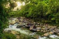 Mossman klyfta - flod i den Daintree nationalparken, Queensland, Aus arkivbilder
