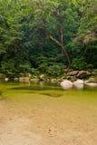 mossman wąwozu tropikalny las deszczowy Obrazy Royalty Free