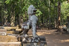 Mossy άγαλμα λιονταριών πετρών, ναός Angkor Wat σύνθετος, Καμπότζη Πνευματικός προστάτης Barong Ο αρχαίος ναός σε Siem συγκεντρών στοκ εικόνες με δικαίωμα ελεύθερης χρήσης