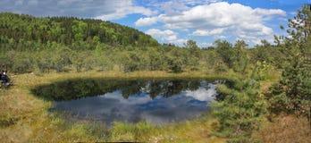 Mossy λίμνη ηφαιστείων στην Ευρώπη Στοκ εικόνα με δικαίωμα ελεύθερης χρήσης