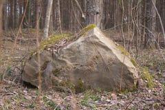Mossy αιχμή πετρών Στοκ φωτογραφία με δικαίωμα ελεύθερης χρήσης